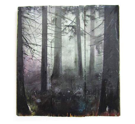 Wald (Multicolor)