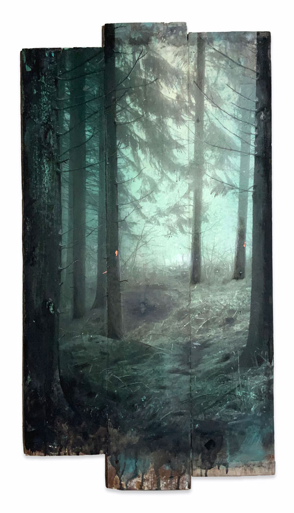 Wald 11-20